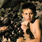 guernica w1280 150x150 - 死、恍惚、パニック! フェルナンド・アラバール!第03回『ゲルニカの木』('75)