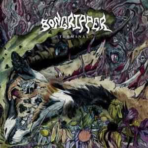 bongripperterminal 300x300 - [:ja]USインスト・ドゥームBONGRIPPERの7thアルバム『Terminal』が7月6日にリリース!収録曲の一部が公開。[:]